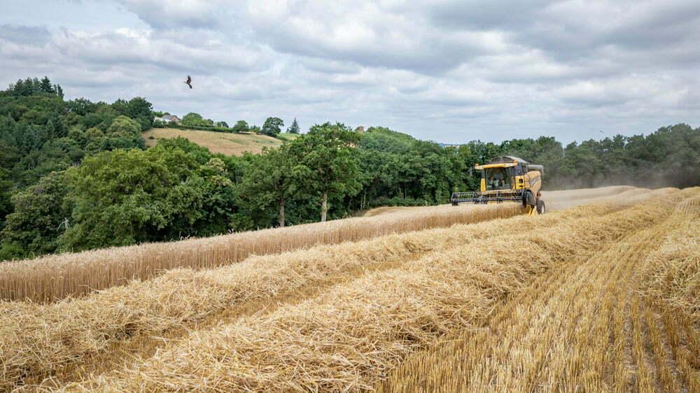Reportage-entreprise-agricole-Aveyron