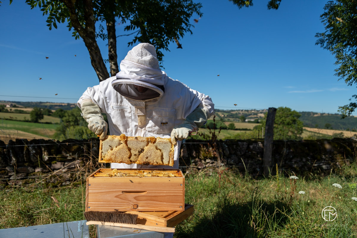 Photographe-reportage-entreprise-apiculture-occitanie