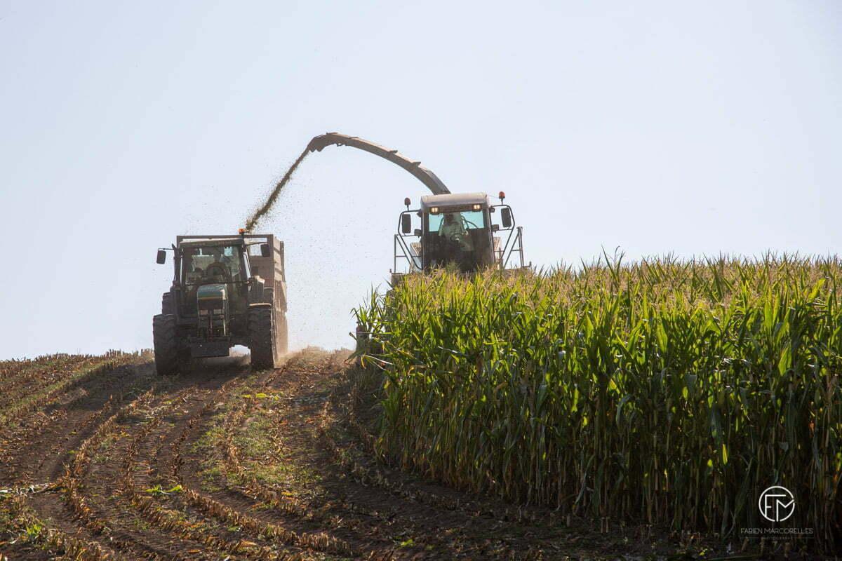 Reportage-agricole-photographe-aveyron-occitanie